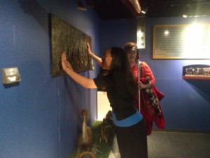 Haben feels tactile mural depicting evolution of humans at blind museum