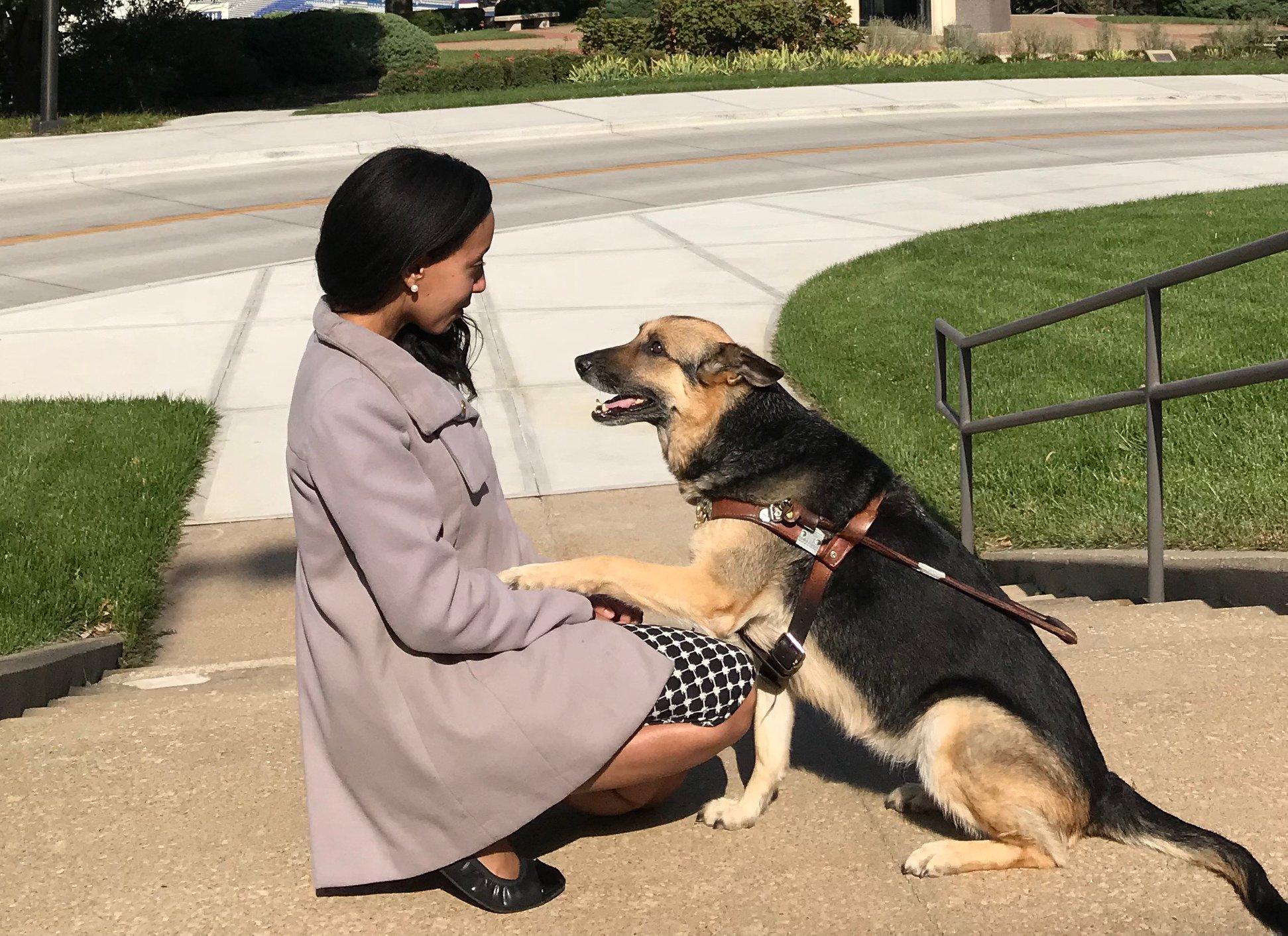 Seeing Eye Dog Training In Kansas